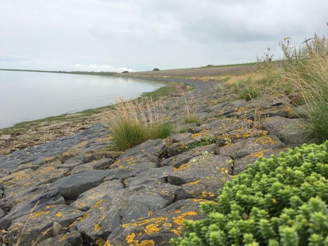 Zuiderzeeroute - Nordsee