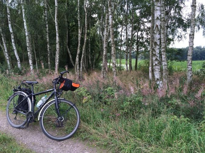 Tempo - 23 Rad am See - Birken